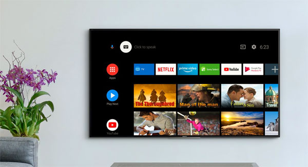 Sony 2019 Android TV