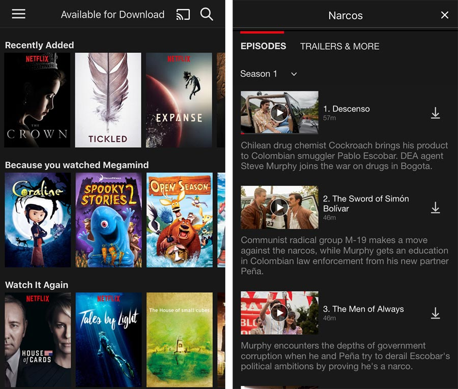 Netflix download
